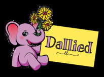 Dallied logo full %28transparent bg%29 square20180529 15938 n3pkq5